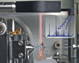 Focus on mass spectrometry