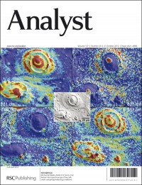 Analyst 2012, Issue 20, front cover