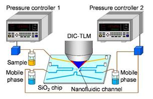 An image of liquid chromatography using nanofluidic chip and DIC-TLM