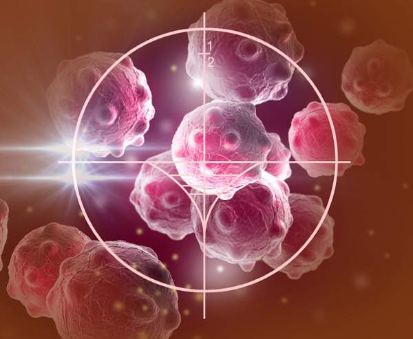 Cancer targeting research