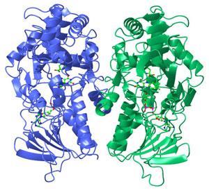 online biotransformations