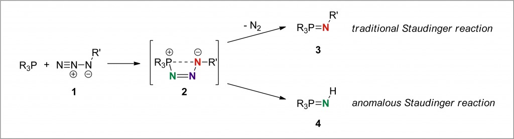 the Staudinger reaction and the anomalous Staudinger reaction