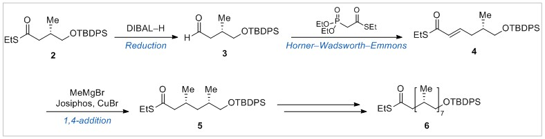 Iterative sequence for the total synthesis of Ac2SGL