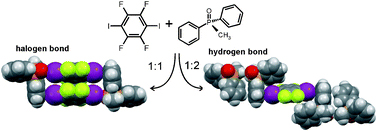 Stoichiometric ratio of methyldiphenylphosphine oxide and p-diiodotetrafluorobenzene determines whether the resulting cocrystal will display hydrogen or halogen bonds