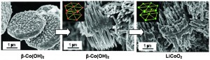 Microscale pin holders of β-Co(OH)2 and LiCoO2 having a single-crystalline feature