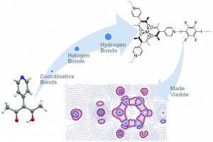 3-(4-Pyridyl)-2,4-pentanedione – a bridge between coordinative, halogen, and hydrogen bonds