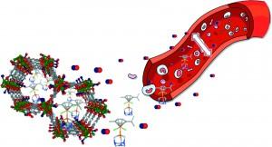 Metal–organic frameworks as potential multi-carriers of drugs