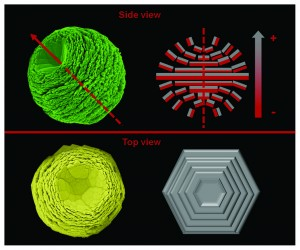 Template-free facile solution synthesis and optical properties of ZnO mesocrystals