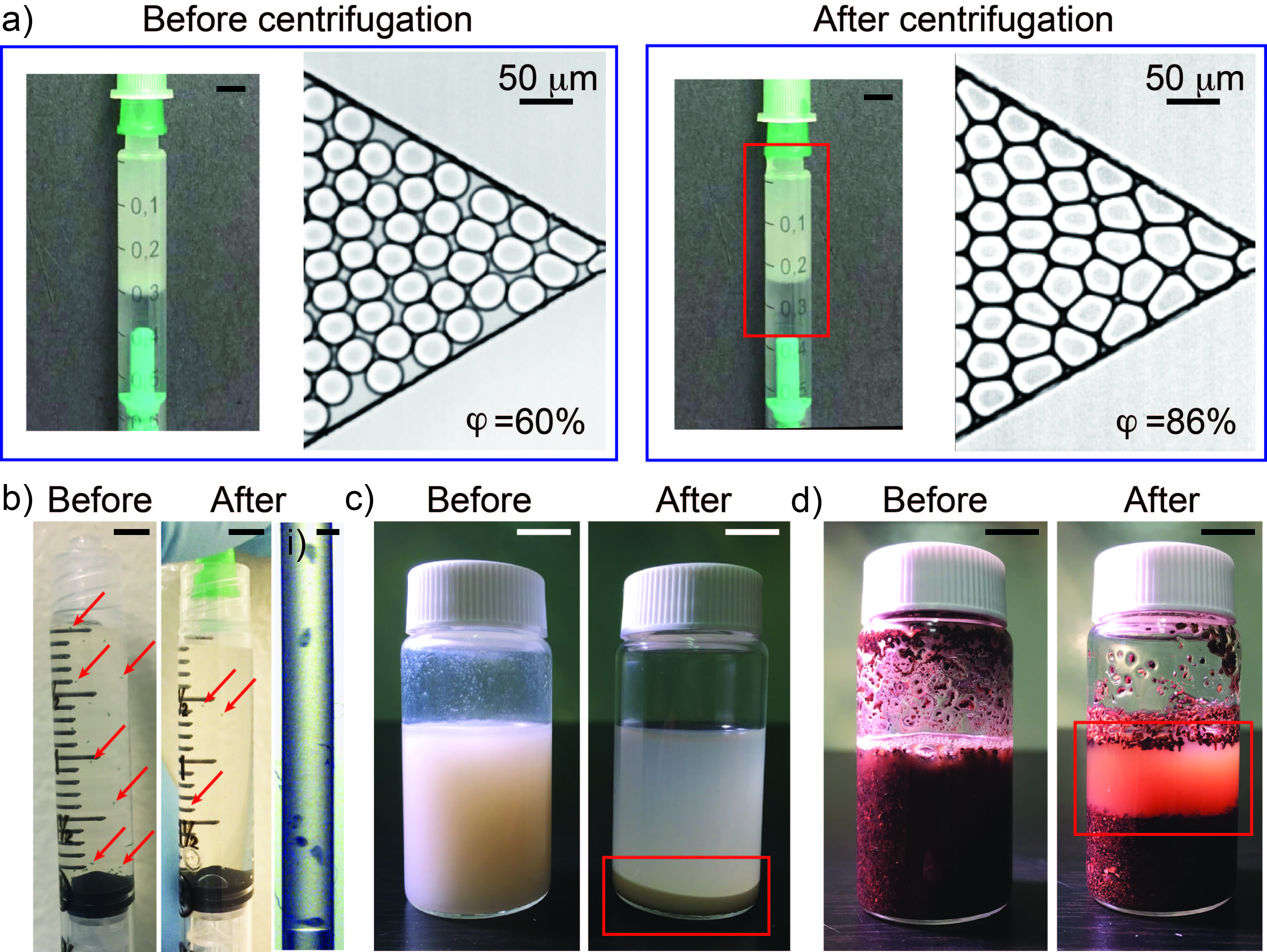 Figure 3 A Photographs Of Emulsion In 1 ML Syringe And Microscopic Images Injected Into Microchannel Before After Centrifugation