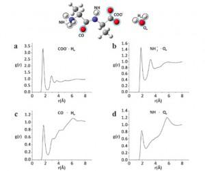 molecular image plus 4 graphs