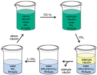 Monophasic hydroformylation and biphasic separation in a liquid mixture of switchable water and tert-butanol