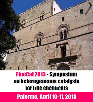 FineCat 2013