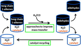Alternative approaches for the aqueous–organic biphasic hydroformylation of higher alkenes