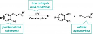 Highly practical iron-catalyzed C–O cleavage reactions