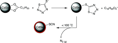 CdSe nanocrystals undergoing ligand exchange and thermolysis