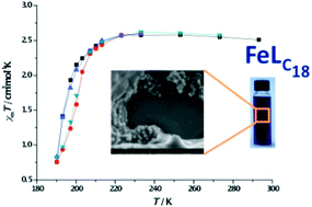 Could mononuclear complexes be the future of magnetic storgae media? Fe3+ organometallic magnetism magnetic storage media