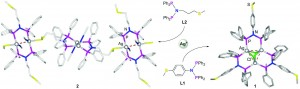 Influence of a thioether function in short-bite diphosphine ligands on the nature of their silver complexes: structure of a trinuclear complex and of a coordination polymer
