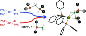 Bis(phosphine)boronium salts. Synthesis, structures and coordination chemistry