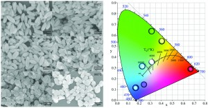 Multicolor and bright white upconversion luminescence from rice-shaped lanthanide doped BiPO4 submicron particles