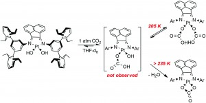 Reversible insertion of carbon dioxide into Pt(II)–hydroxo bonds