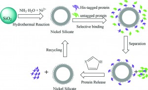 Preparation of hollow nickel silicate nanospheres for separation of His-tagged proteins