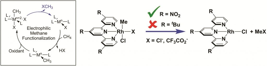 Reductive functionalisation of a Rh-Me bond