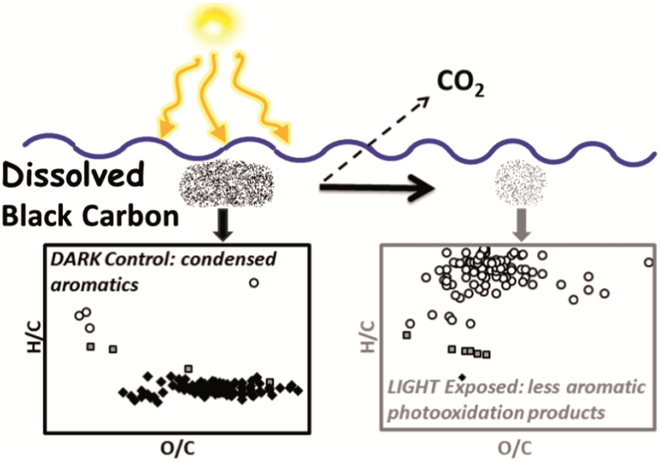 Shedding Light On The Degradation Of Black Carbon In