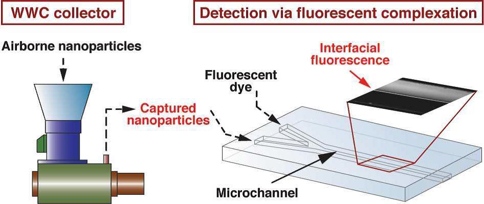 Fluorescent Complexation