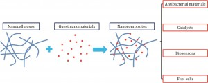 Nanocellulose-based nanocomposites