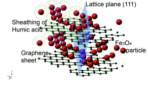 Schematic diagram of humic acid coating