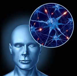 A human head and an image of neurotransmitters