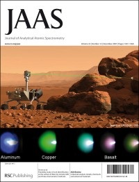 Study of rock identification at the surface of Mars by LIBS