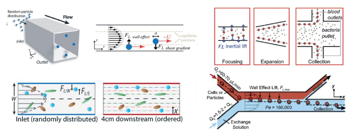 Microscale Inertial Flow Regimes