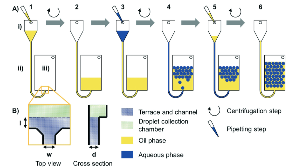 Workflow of centrifual step emulsification without dead volume