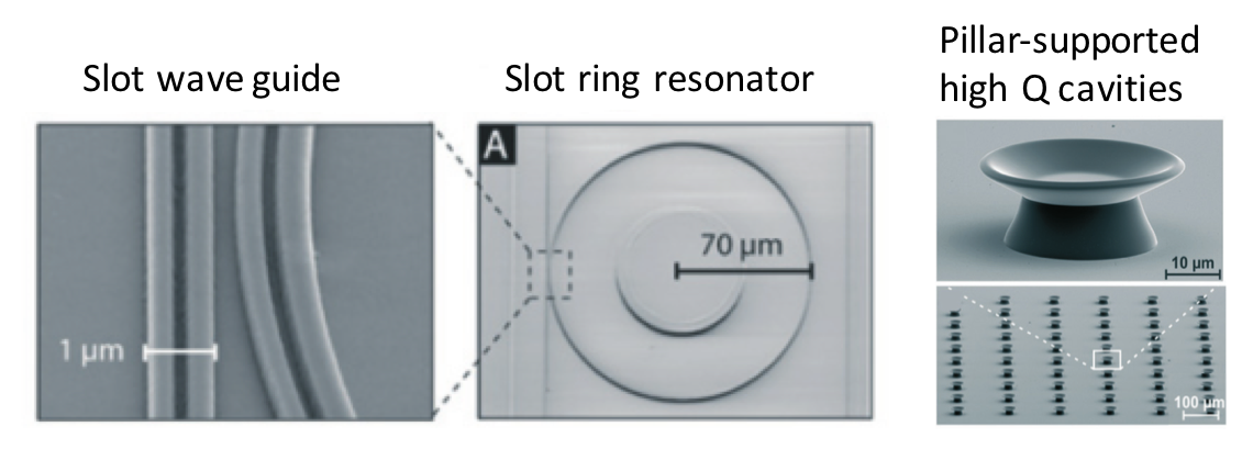 microring resonator based on-chip sensor, pillar-supported high Q cavities