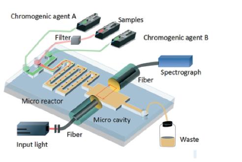 optofluidic phosphate monitoring