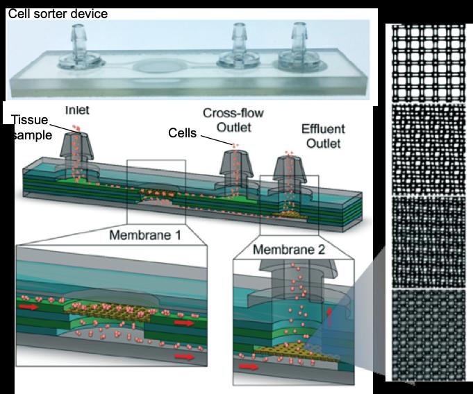 cell sorter