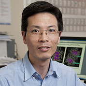 Photograph of Professor Rongchao Jin