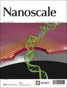 Nanoscale Issue 22 Outside Front Cover