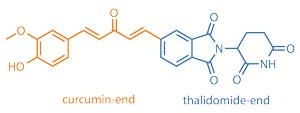 curcumin-thalidomide-hybrid-structure_300