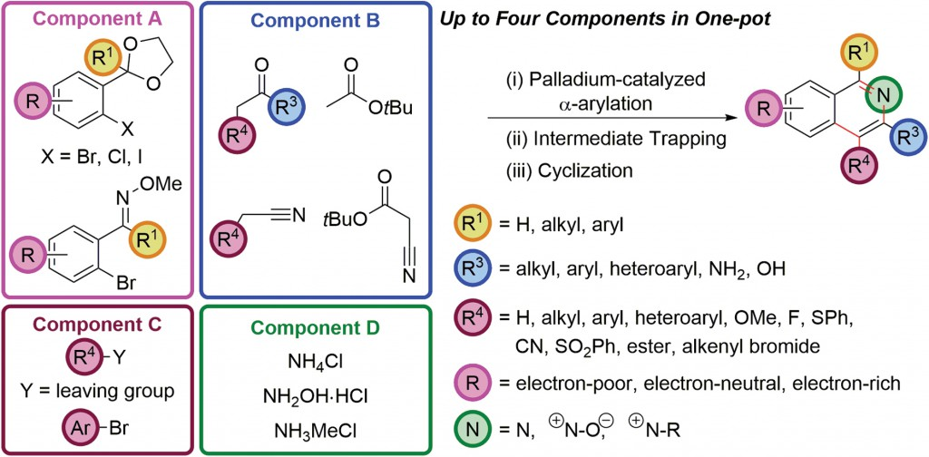 Palladium-catalyzed enolate arylation as a key C–C bond-forming reaction for the synthesis of isoquinolines