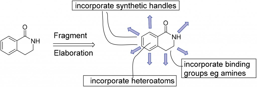 Schematic representation of synthetic elaboration of fragment 1. Growth positions are shown as blue arrows and the incorporation of aromatic heteroatoms and polar binding groups are indicated.