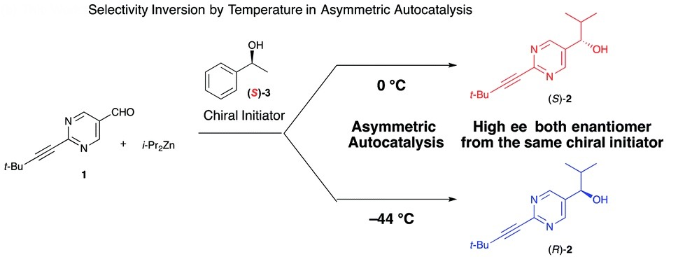 Insights Into Temperature Controlled Enantioselectivity In