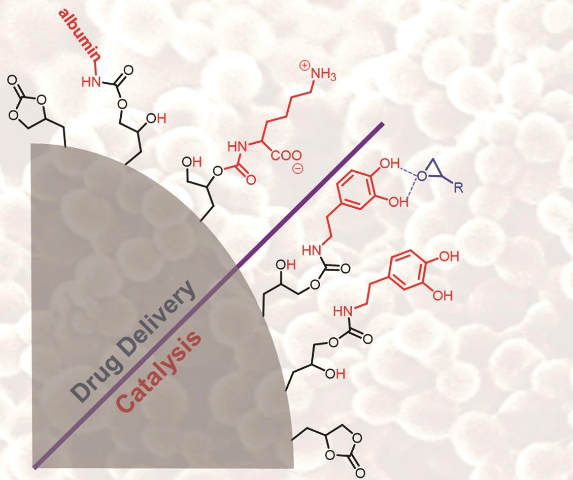 Polymer Chemistry Blog