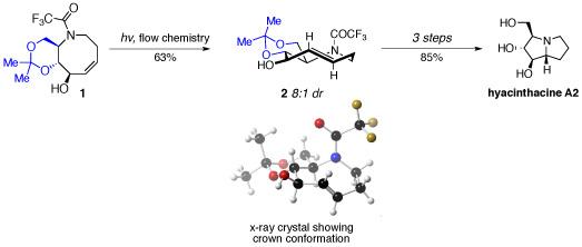 hyacinthacine synthesis