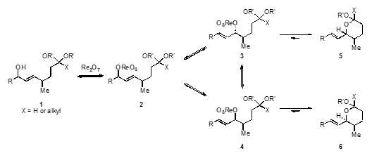 cyclisation reaction