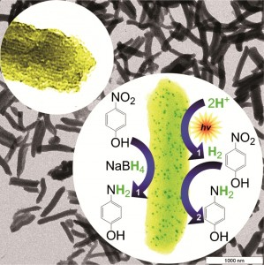 Nanorods support metal nanoparticle catalysts