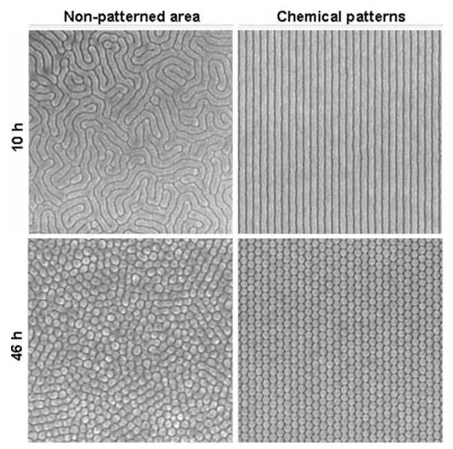 PS-b-PMMA nanopatterned polymer with acetone annealing